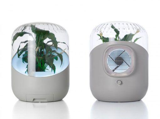 purificador de aire que funciona con plantas
